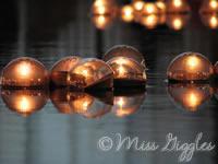 December 30, 2007 – Christmas lights