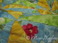 January 17, 2007 – blanket close-up