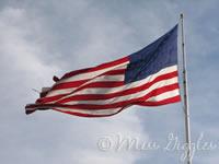 June 14, 2007 – flag day