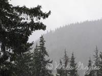 May 3, 2007 – snow?