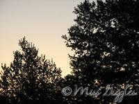 May 9, 2007 – sunset