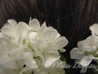 May 13, 2007 – flowers in my hair