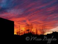 November 29, 2007 – sunset