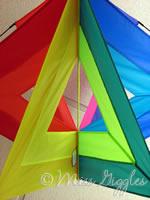 October 30, 2007 – kite