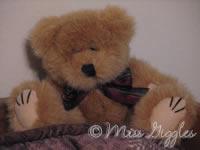 September 17, 2007 – bear