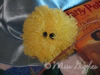 September 19, 2007 – Pygmy Puff